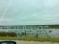 Big Lake!